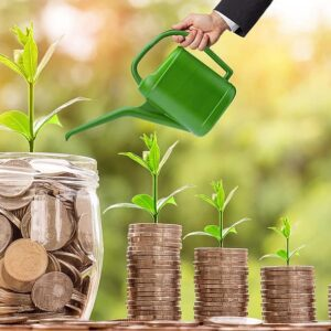 investment-money-interest-loan-credit-watering-can-sprout-grow